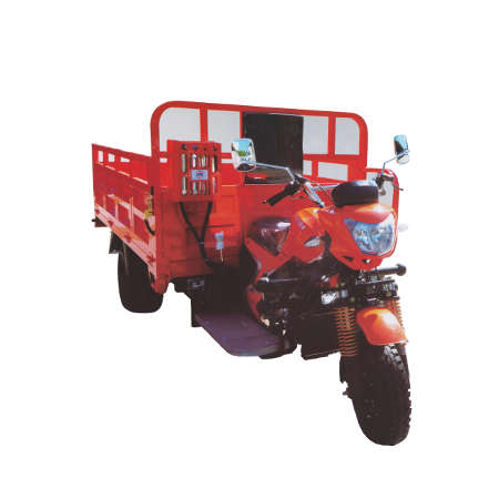 Dongben Brand Tricycle (DB200ZH-200CC) (Double Wheel)