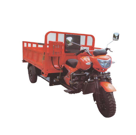 Dongben Brand Tricycle (DB200ZH-200CC) (Single Wheel)