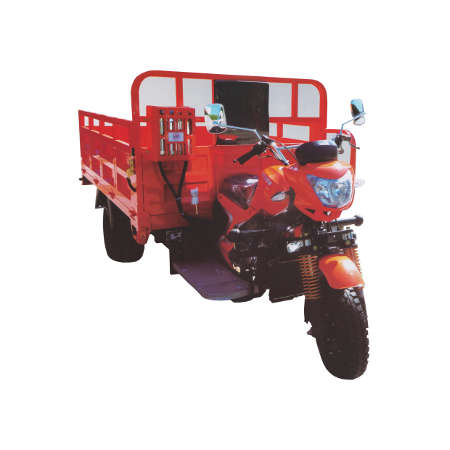 Dongben Brand Tricycle (DB300ZH-300CC)